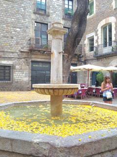 屋外,海外,葉っぱ,黄色,葉,鮮やか,落ち葉,旅行,噴水,広場,スペイン,野外