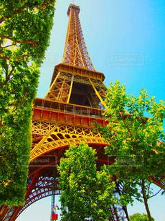 空,建物,木,屋外,海外,緑,アート,観光,都会,旅,フランス,パリ,エッフェル塔,海外旅行