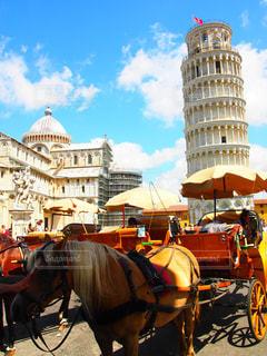 建物,屋外,海外,青空,散歩,観光地,旅行,旅,馬,馬車,イタリア,ピサの斜塔