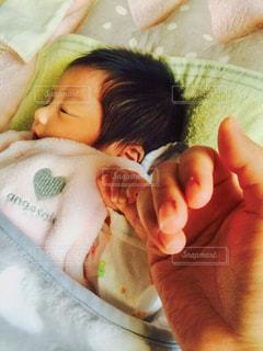 小さな手と大きな手の写真・画像素材[1869666]