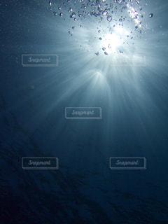 海の中からのキラキラ光る太陽の光の写真・画像素材[1879805]