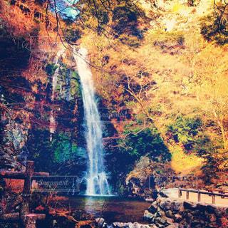 森の中の大きな滝の写真・画像素材[784661]