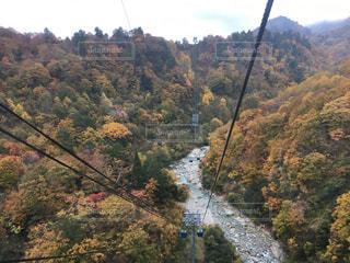 秋,紅葉,新潟,湯沢,苗場,ドラゴンドラ