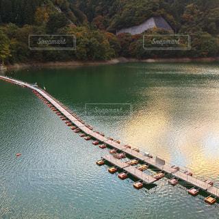 自然,橋,紅葉,木,屋外,東京,湖,水面,山,樹木,日本,japan,奥多摩,Nippon,浮橋
