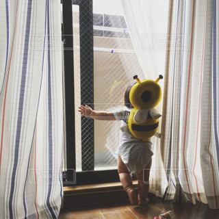 晴れ,足,後ろ姿,窓,カーテン,日差し,赤ちゃん,朝,こども,明るい,baby,ハチ,ムチムチ
