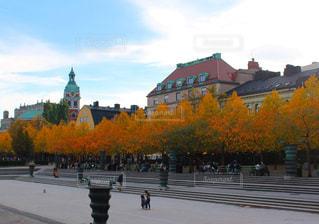 公園,秋,紅葉,スウェーデン,ストックホルム,ヨーロッパ,北欧,秋の空,黄葉