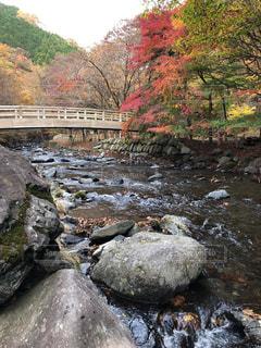 自然,秋,紅葉,群馬県,みどり市,小中大滝展望台