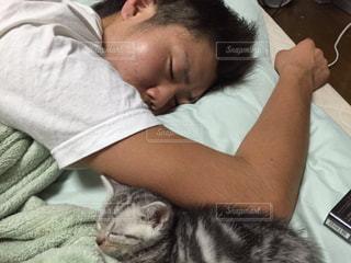 猫と私の写真・画像素材[1624325]