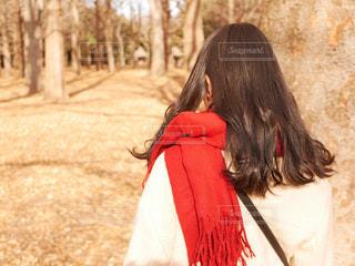 赤いマフラーをした女の子の写真・画像素材[1695991]