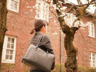 桜の木のと、スーツを着た女性の写真・画像素材[1886266]