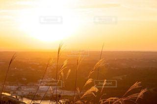 自然,風景,空,秋,屋外,太陽,朝日,雲,霧,光,朝,日の出,早朝,草木,日中