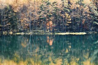 秋,紅葉,水面,池,旅行,群馬,御射鹿池