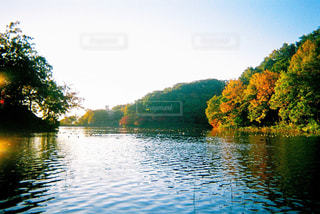 秋,紅葉,湖,朝日,水面,反射,埼玉,早朝,フィルムカメラ,八丁湖