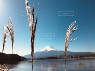 水の体の写真・画像素材[1611053]