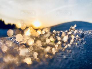 雪の写真・画像素材[1817495]