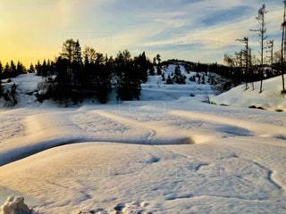 雪に覆われた斜面の写真・画像素材[1821442]