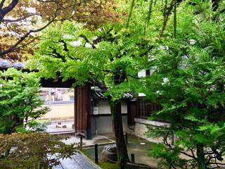 京都の写真・画像素材[1668760]