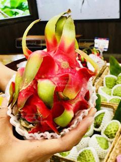 沖縄,フルーツ,ドラゴンフルーツ