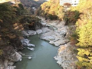 鬼の川と紅葉の写真・画像素材[1611647]