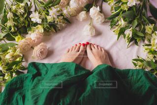 近くの花のアップの写真・画像素材[1825723]