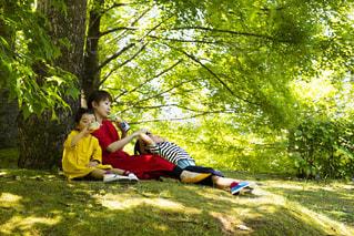 木の隣に座っている若い男の子の写真・画像素材[2214382]