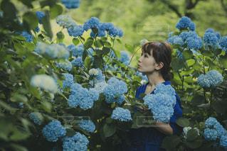 花の写真・画像素材[2250674]