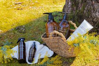 草に覆われた畑の上に座っている花瓶の写真・画像素材[2994587]