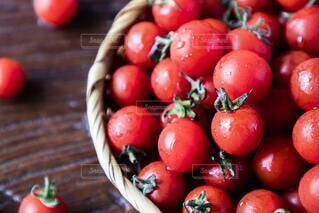 食べ物,夏,屋内,赤,かわいい,水滴,トマト,野菜,ミニトマト,食品,たくさん,新鮮,食材,夏野菜,フレッシュ,ベジタブル,ザル