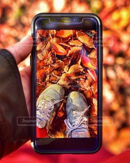 iPhone越しの私の世界の写真・画像素材[1648648]