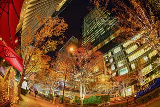 カメラ女子,イルミネーション,クリスマス,フォトジェニック,グランフロント大阪,シャンパンゴールド