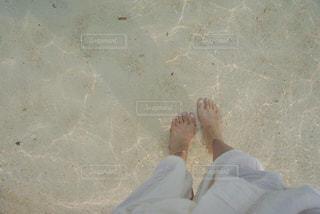 透明度。の写真・画像素材[1821456]