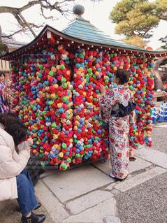 カップル,京都,後ろ姿,人物,背中,着物,旅行,休日,デート,願い事,京都観光,金剛寺