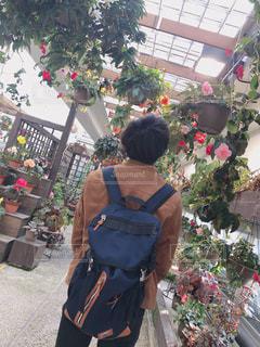 花,春,カップル,後ろ姿,人物,背中,人,休日,福岡,デート,リュック