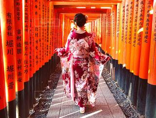 伏見稻荷神社にいるの写真・画像素材[1659224]