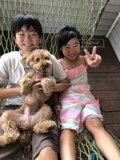 犬を保持している小さな兄妹の写真・画像素材[1625817]