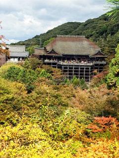 京都清水寺。。。の写真・画像素材[1665985]