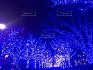青の洞窟 渋谷の写真・画像素材[1693311]