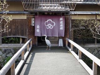祇園白川の写真・画像素材[1667041]