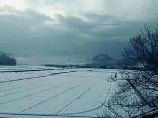 冬,雪,白,車窓,新幹線,銀世界,関ヶ原