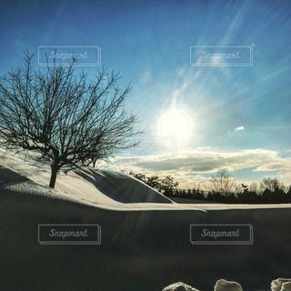 自然,冬,屋内,雪,雪景色