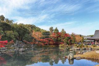 京都の秋の写真・画像素材[1666224]