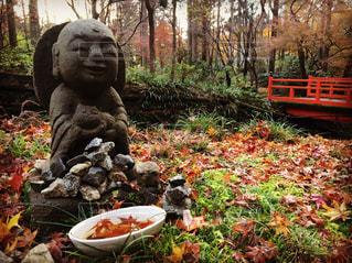 京都三千院の紅葉の写真・画像素材[1666264]