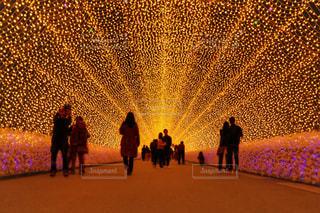 光のトンネルの写真・画像素材[1680664]