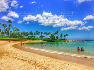 ハワイの海の写真・画像素材[1817901]