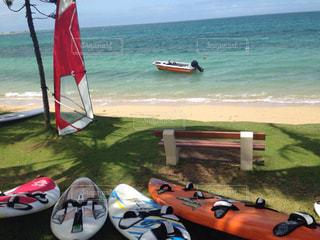 海,木,屋外,サーフボード,カラフル,景色,旅行,ニューカレドニア,海外旅行