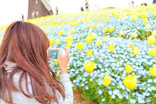 花に夢中の写真・画像素材[2293561]