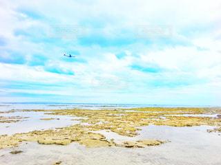砂浜の写真・画像素材[3009163]
