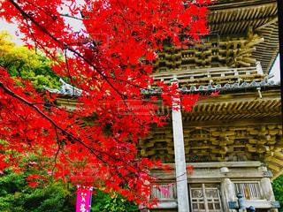 島根県安来市清水町にある瑞光山 『清水寺』の写真・画像素材[1647967]