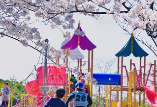 公園,春,桜,後ろ姿,子供,人,後姿,こども,遊具,後ろ,島根,島根県,さくら,一の谷公園