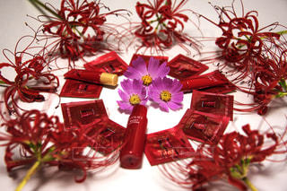 植物にピンクの花の写真・画像素材[767370]